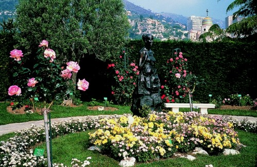 Flower Garden of Princess Grace
